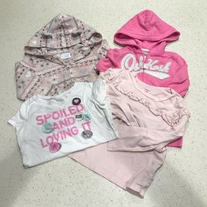 Toddler Girls Clothes Lot 5T